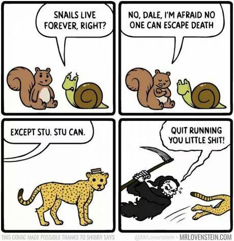 Stu can skip death........................ - meme