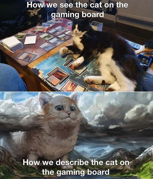 How e see the cat on the gaming board vs how we describe the cat on the gaming board - meme