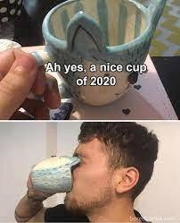 2020 in a nutshell - meme
