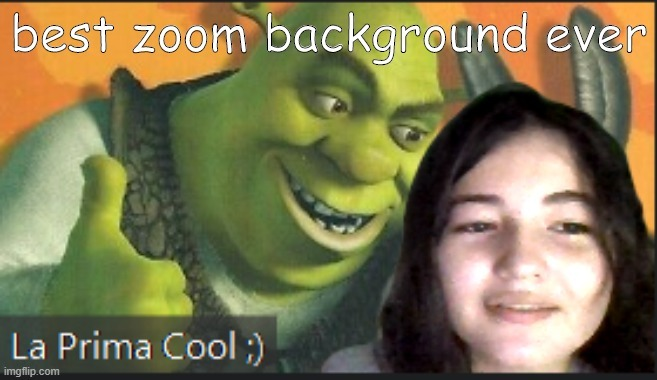 "my cousin is an epic memer  (btw her zoom name means ""the cool cousin"")"