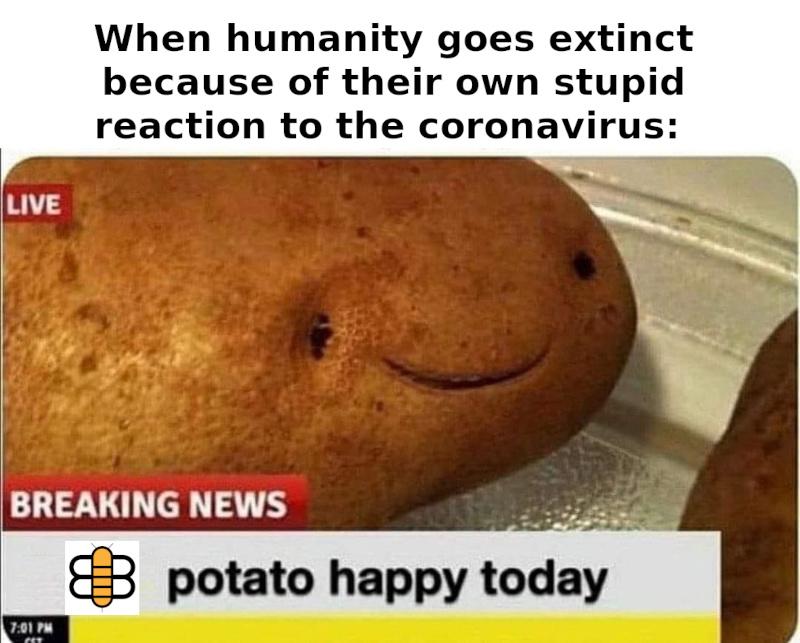bee happy potato - meme
