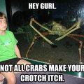 Sexy crab