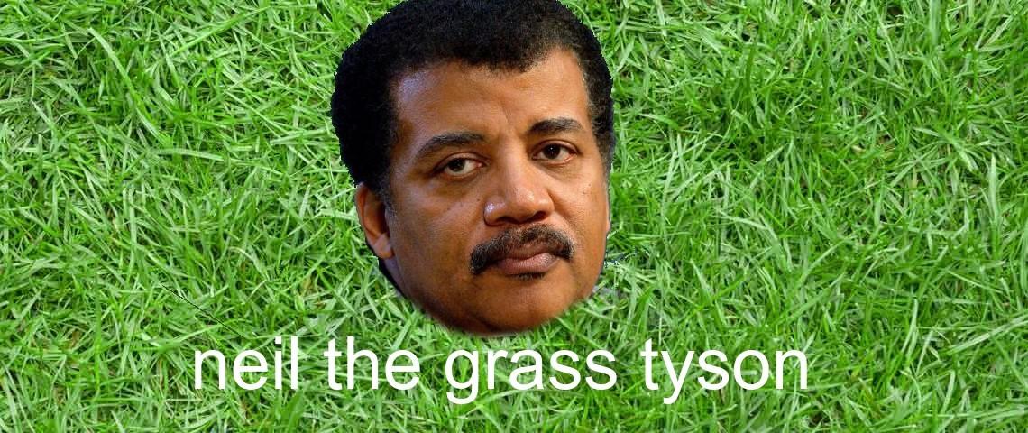 neil the grass tyson - meme