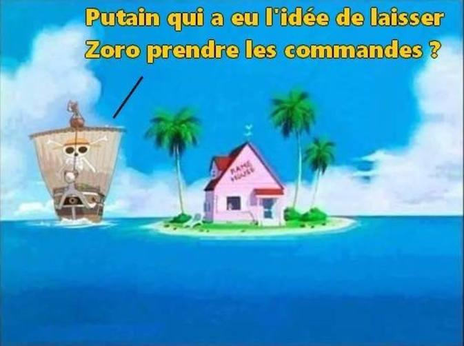 ZORO PUTAIN - meme