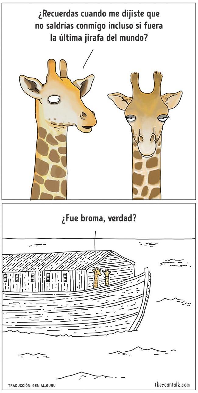 animales :D - meme