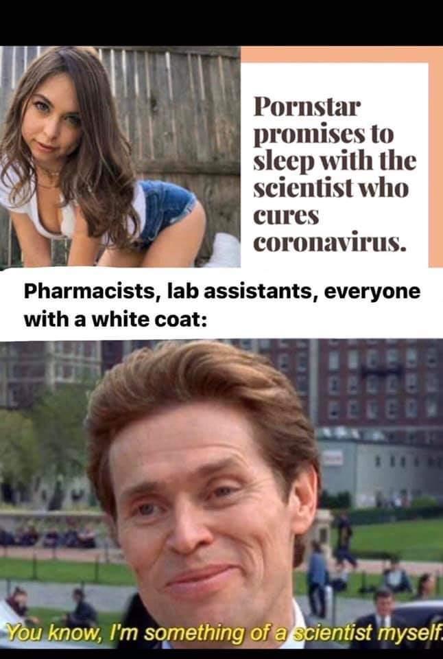 dongs in a scientist - meme