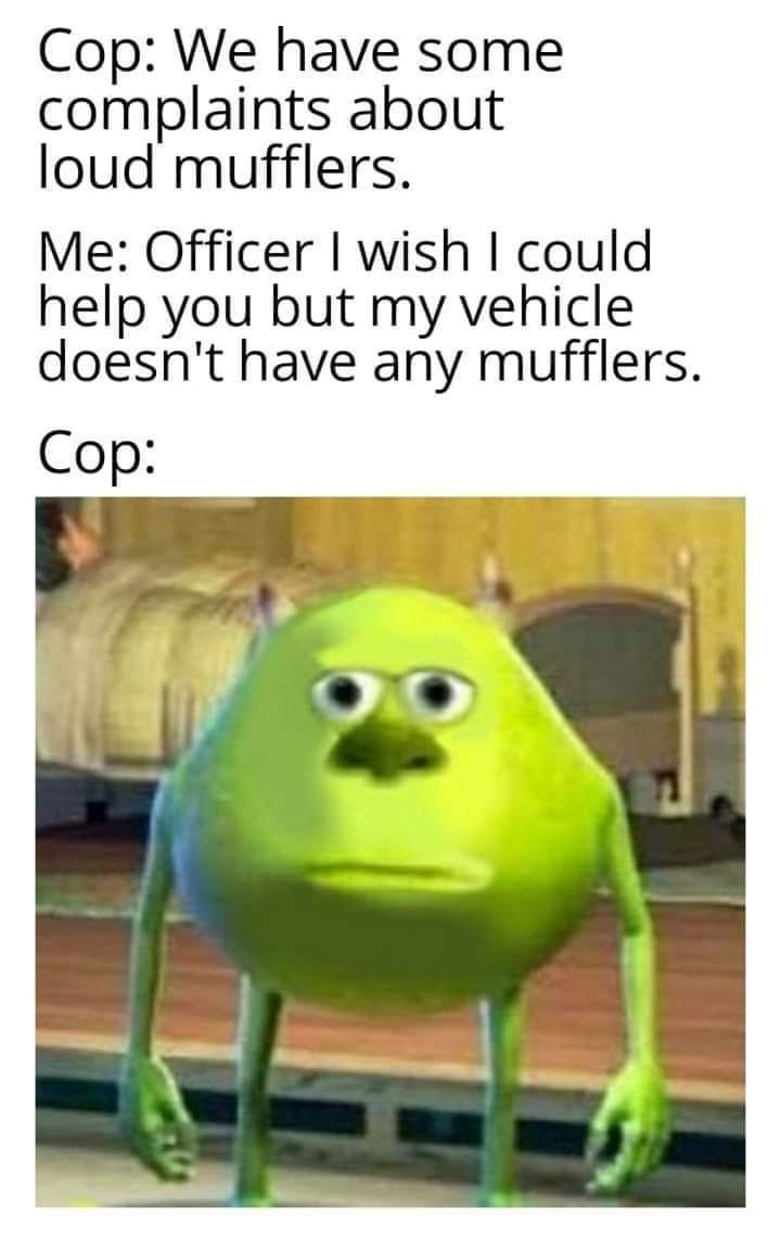 Mufflers are for the birds - meme