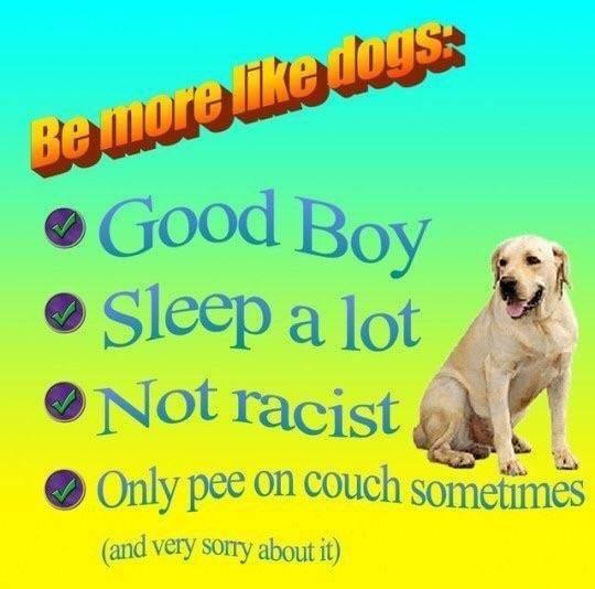 be good bois - meme