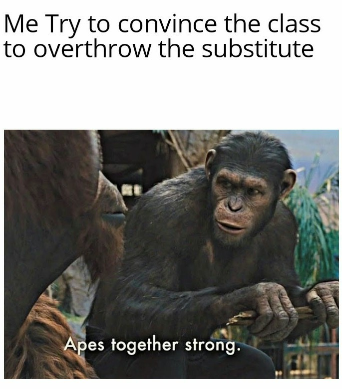Monke Meme 2  electric boogaloo