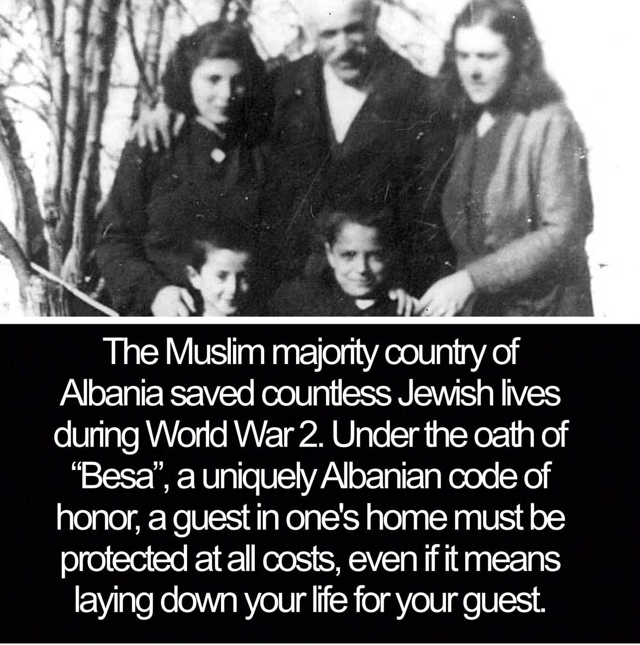 Albanian Muslims save Jews - meme