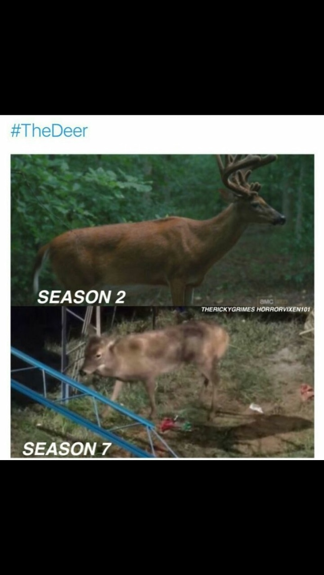 still love the show but the effects this season have been noticeably shit - meme