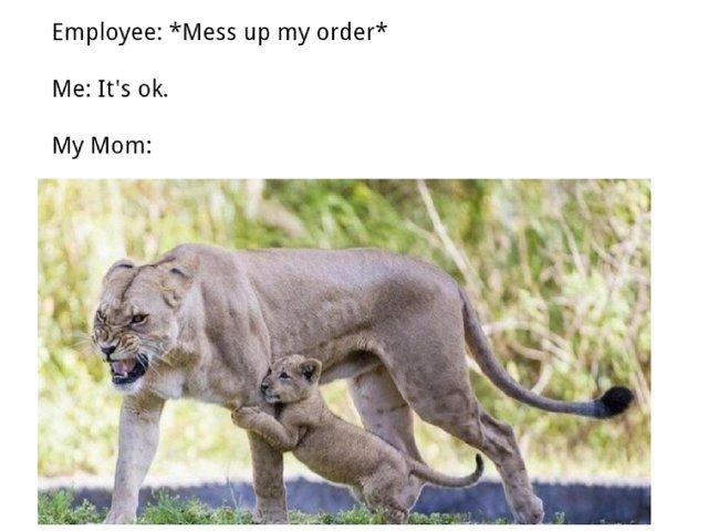 It's OK mom don't make a scene please! - meme