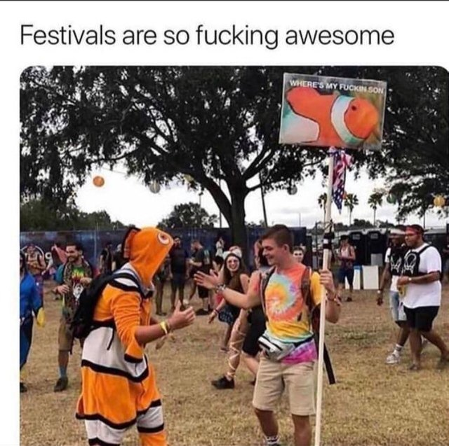Festivals are so fucking awesome - meme