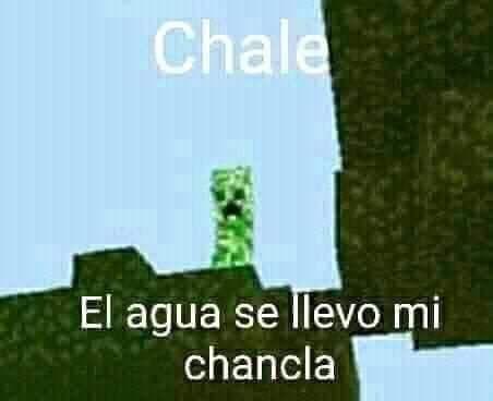 Pobre chala :( - meme