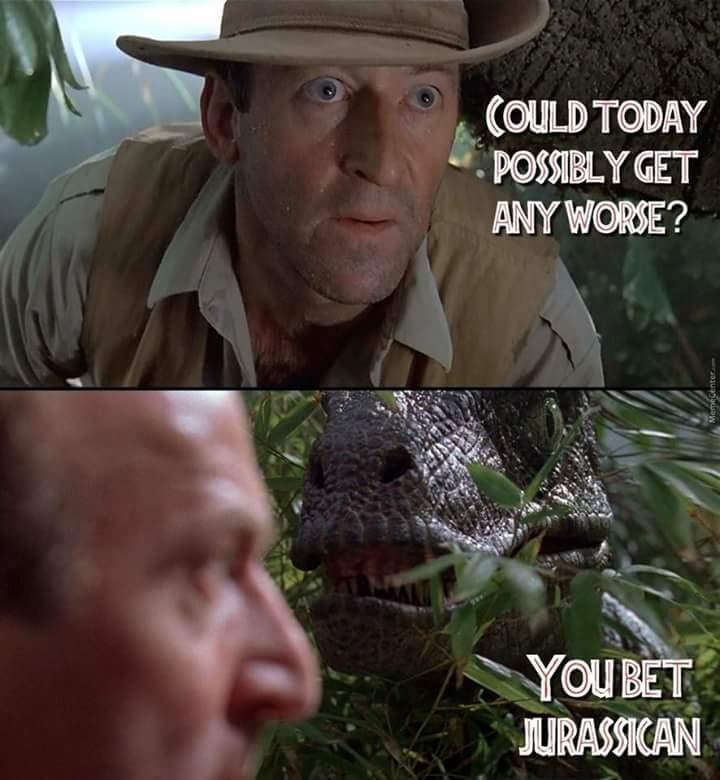 Raptor meow - meme