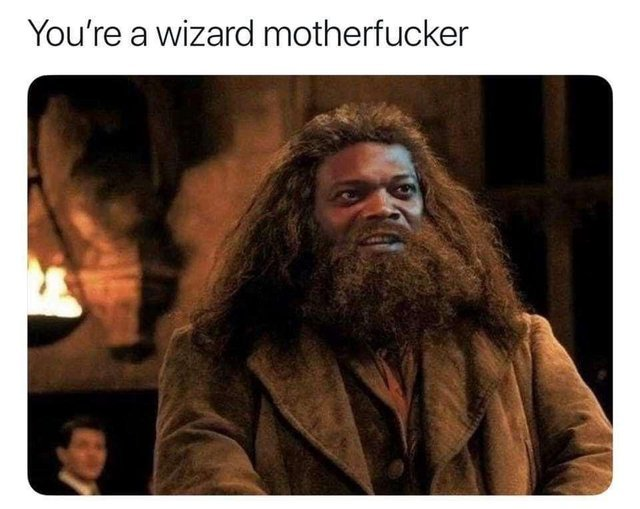 You're a wizard motherfucker - meme
