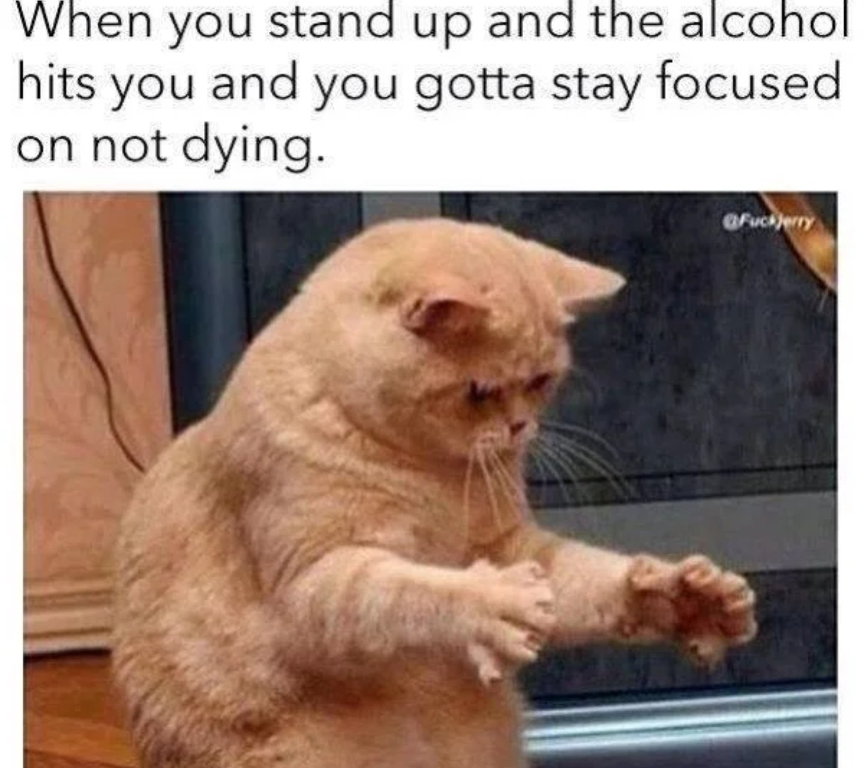 Not a big drinker - meme