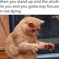 Not a big drinker