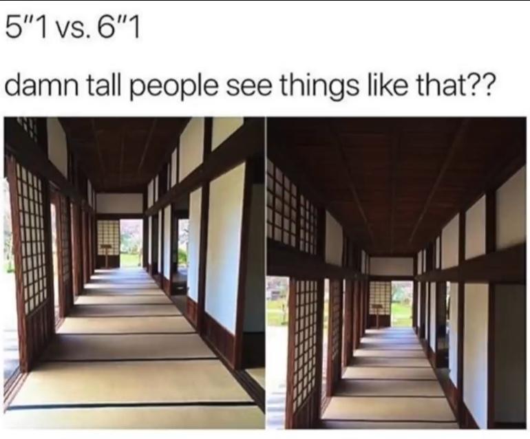 Tall people see like that - meme