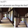 Tall people see like that