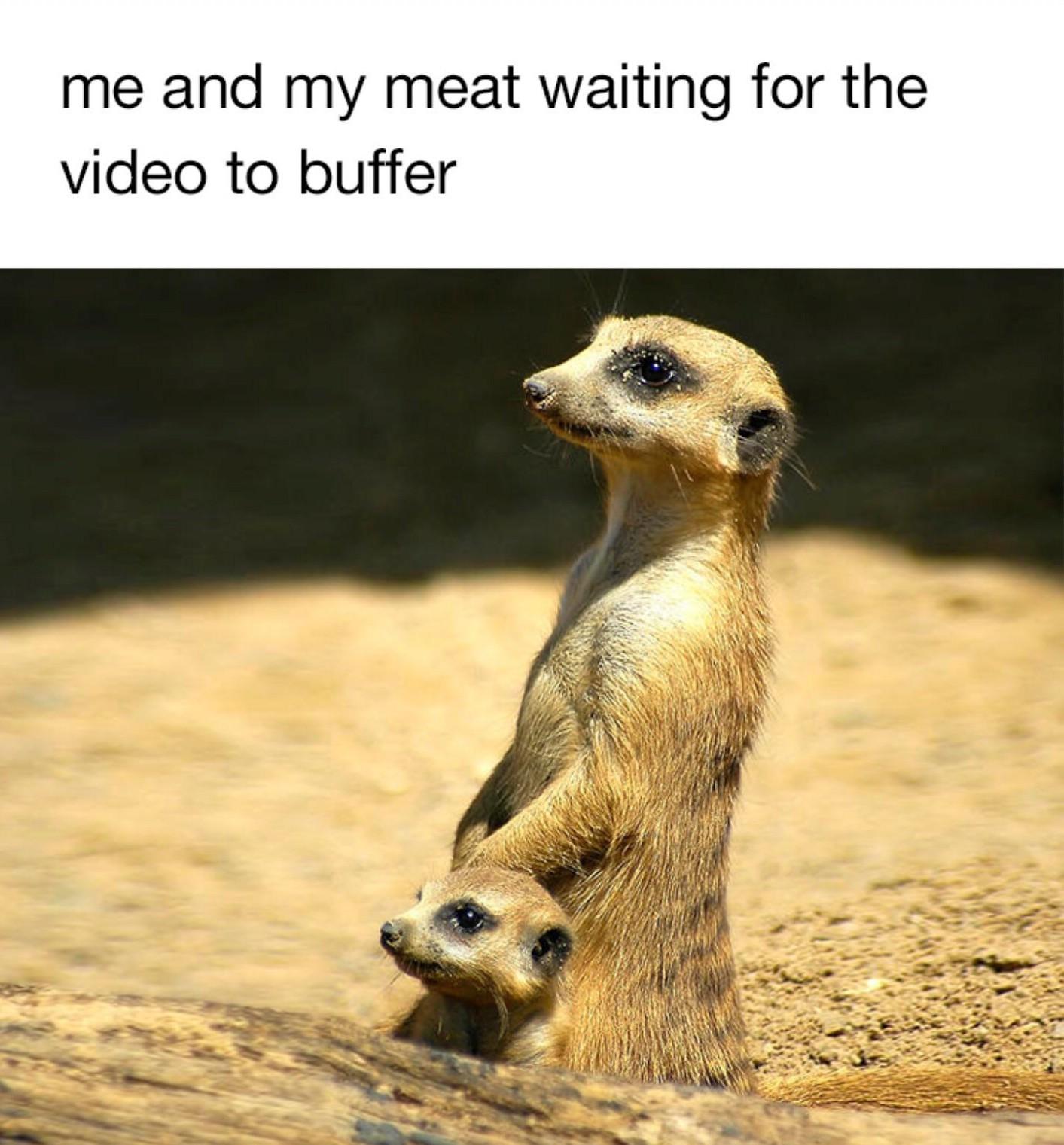 :-( - meme