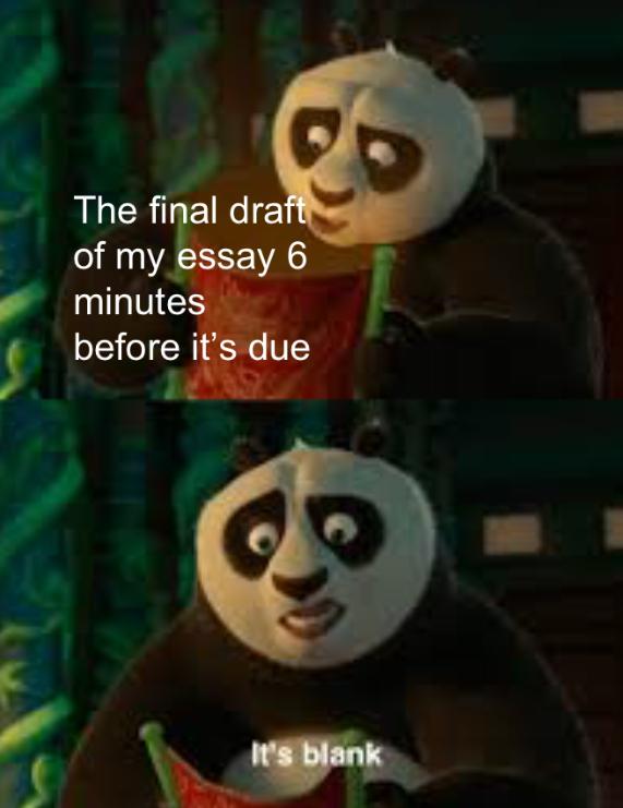 The Best Kung Fu Panda Memes Memedroid