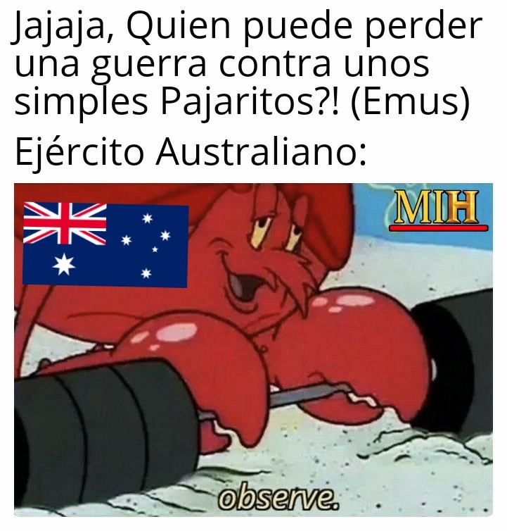 Que es más eficaz, ¿La marina boliviana o el ejército Australiano? - meme