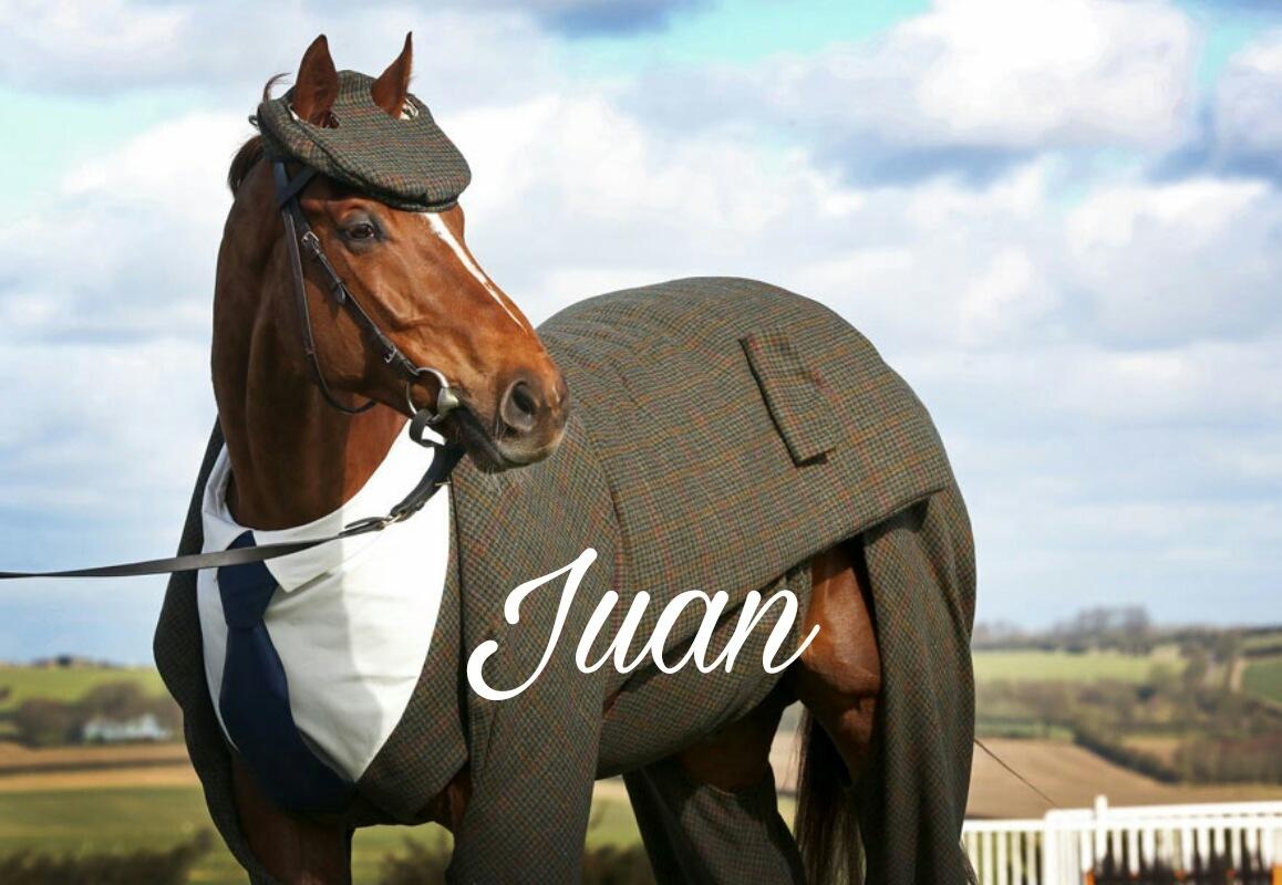 Juan Elegante - meme