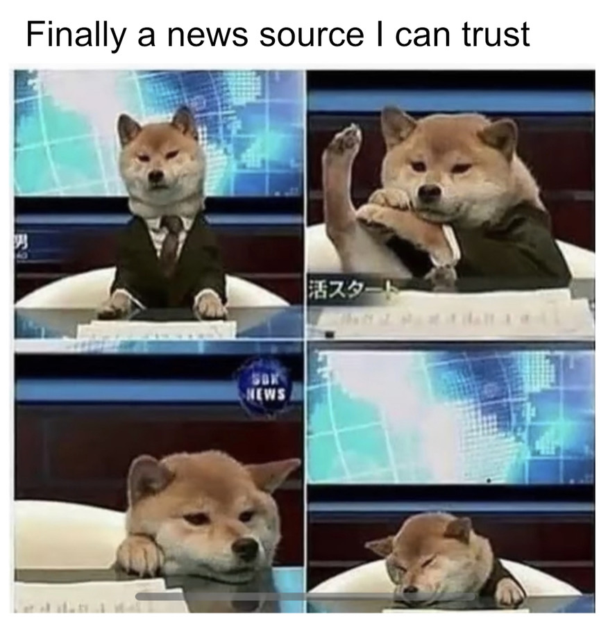 I made this by searching doggy news, took multiple screenshots, finally I put them in a google slides - meme