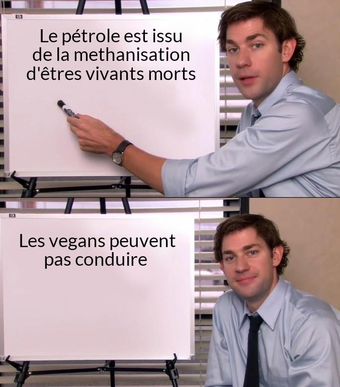 Les fossiles c'est pour les bitch - meme