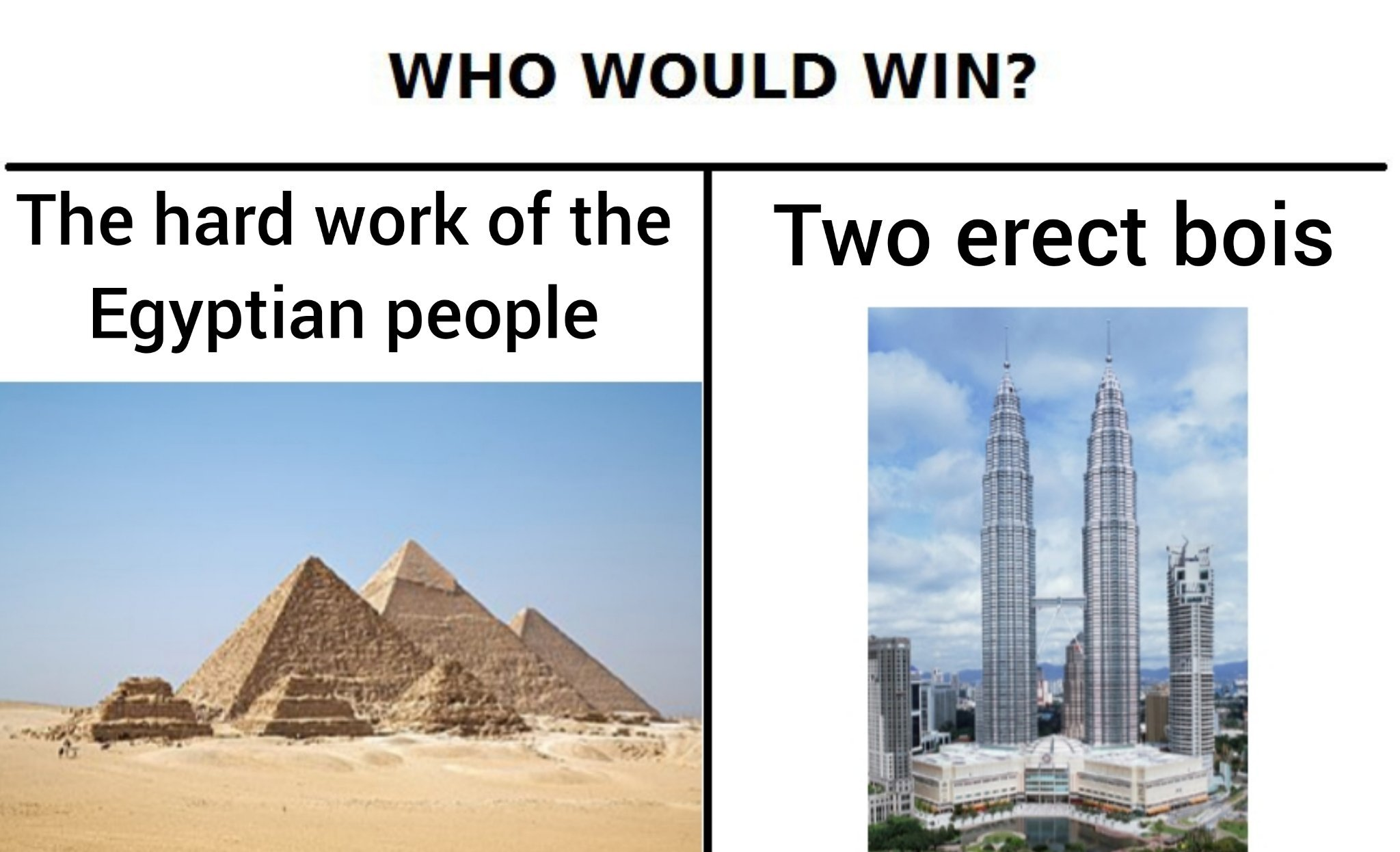 The mighty double erection. - meme
