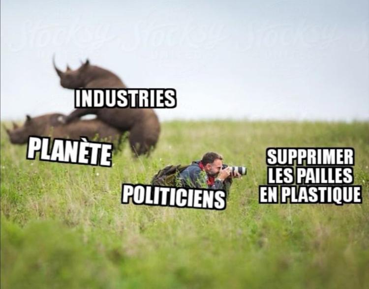 Rhino - meme