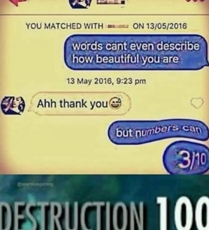 D E S T R U C T I O N - meme
