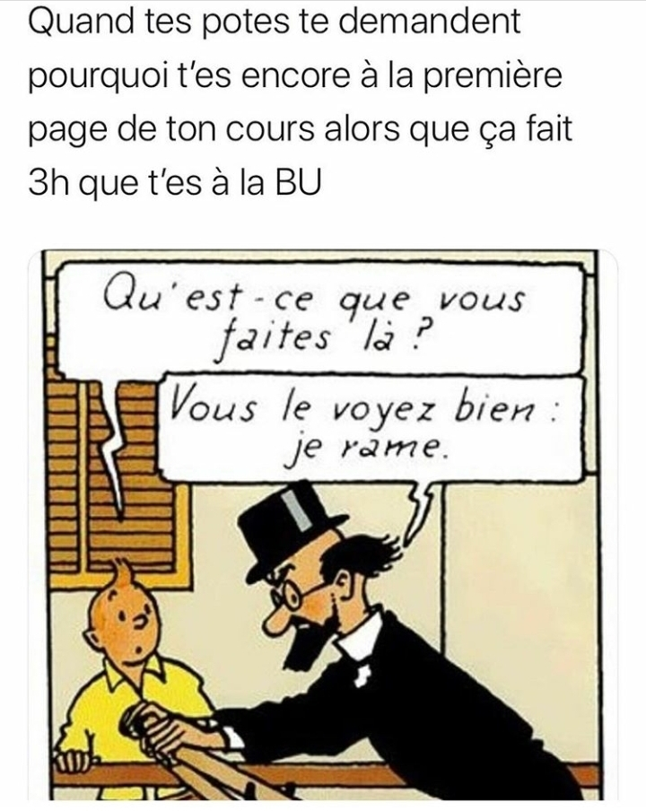Meanwhile in the Licence de Droit - meme
