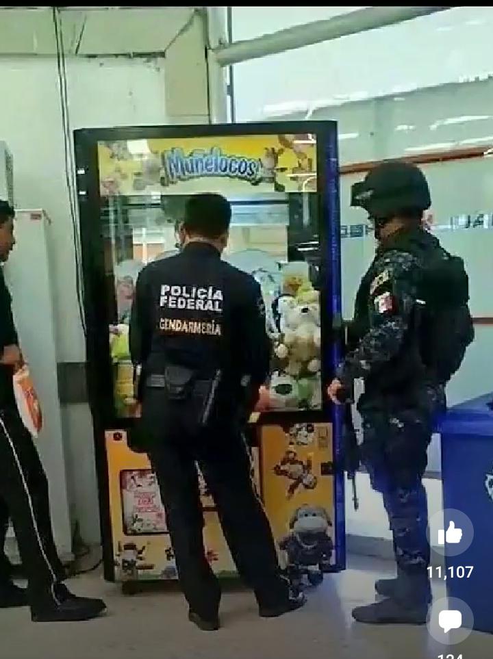 policía Federal de los peluches confiscamos todos estos peluches - meme