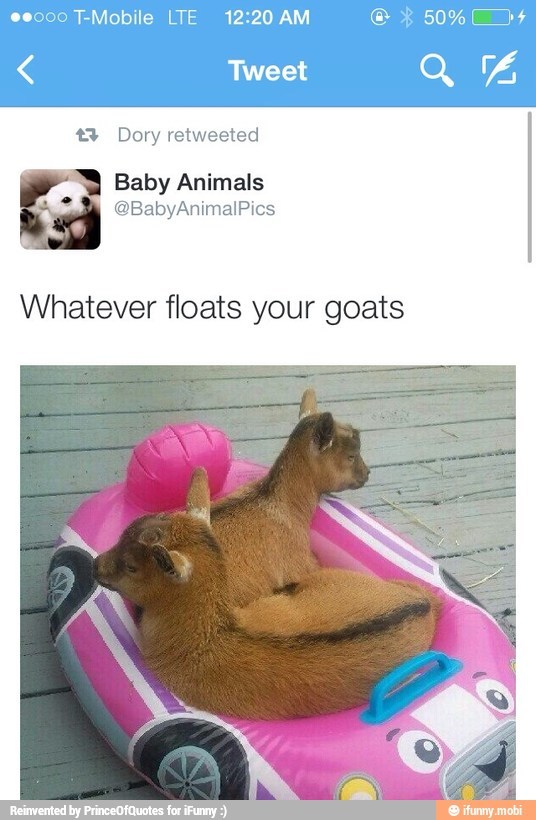 whatever floats your goats - meme