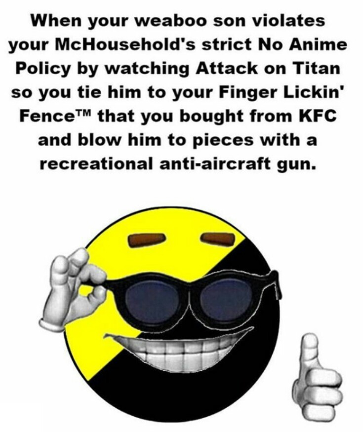 Damn anarcho-weeaboos. You never know where they could be lurking - meme