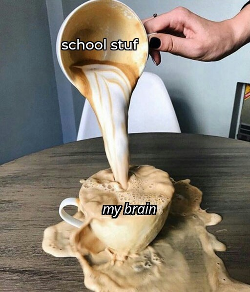 My brain - meme