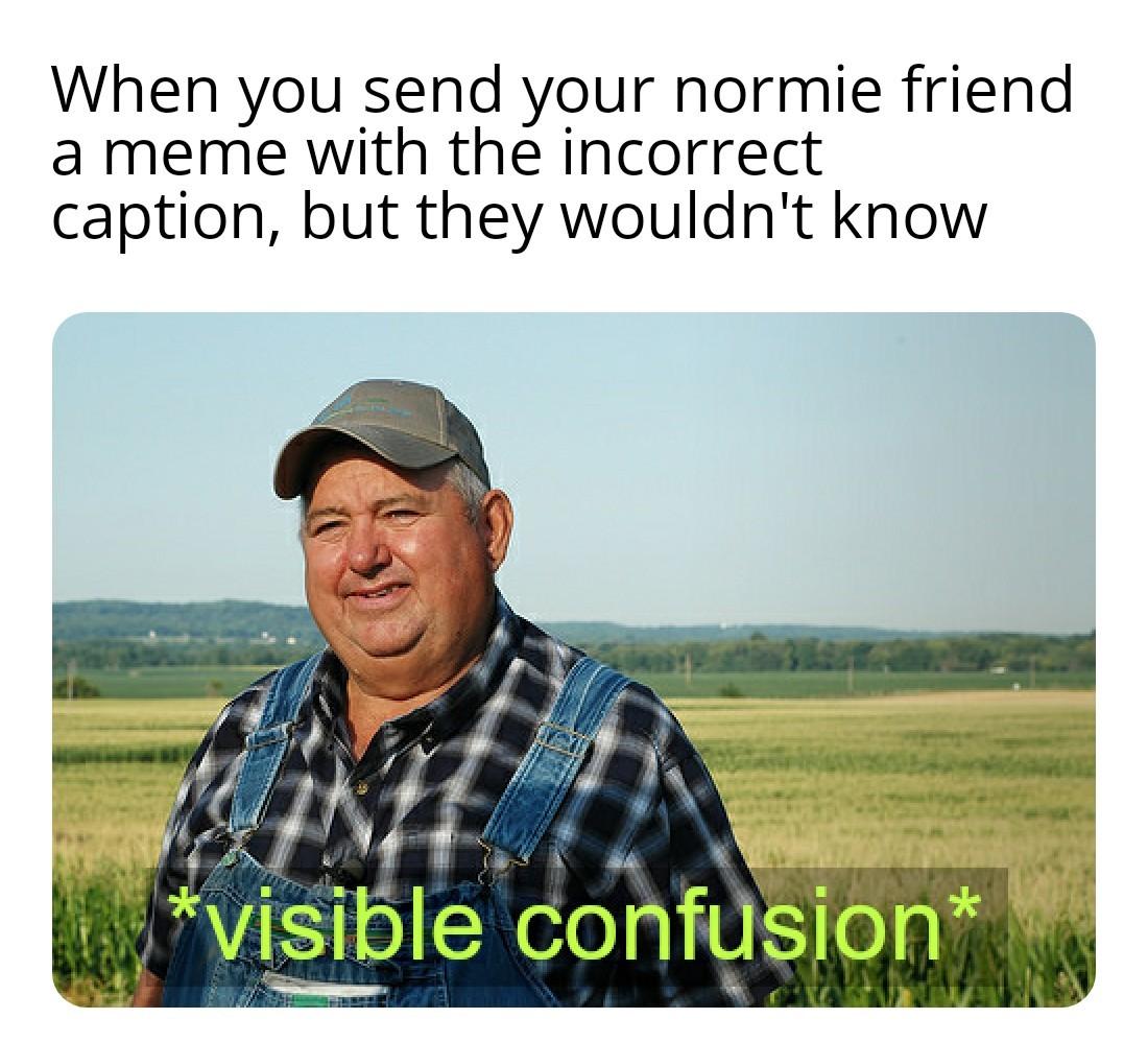 Very yes - meme