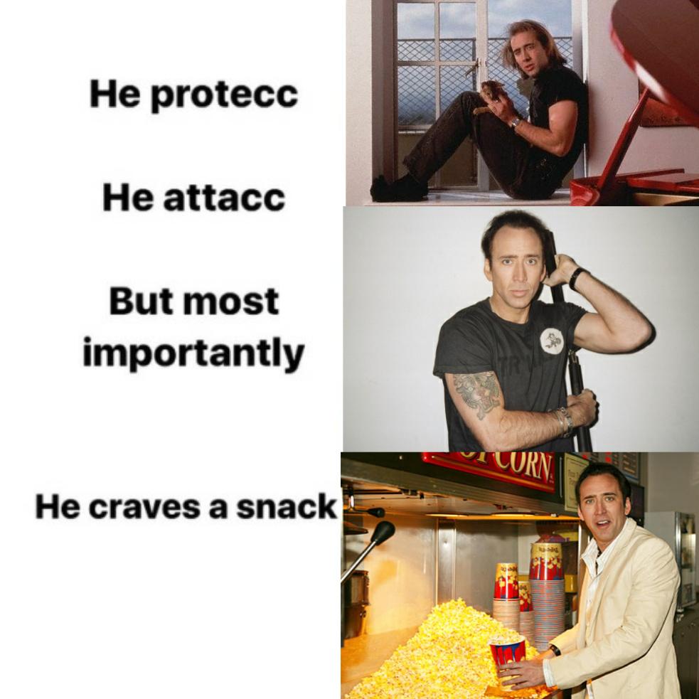 Nicolas cage is the best - meme