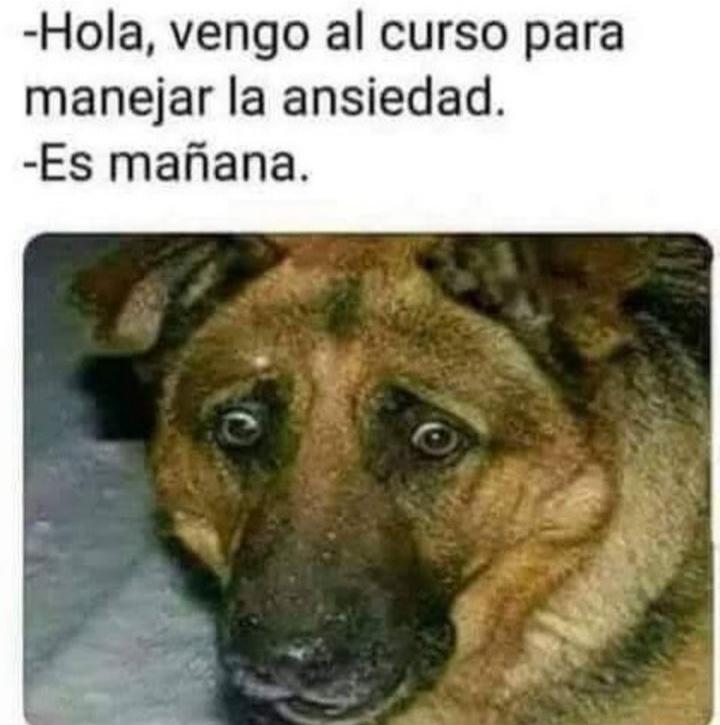 REPOSTERÌA DE LA BUENA - meme
