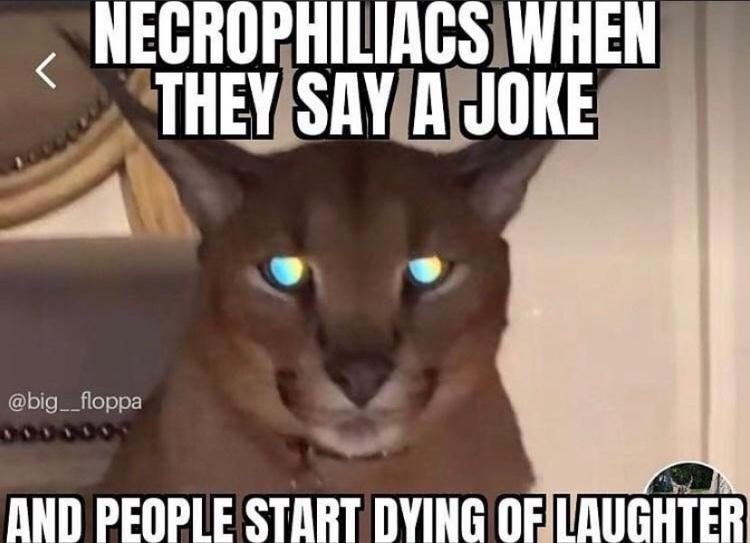 big floppa shitpost - meme