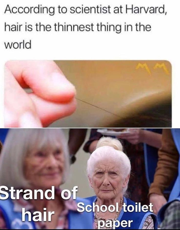 don't poop at school - meme