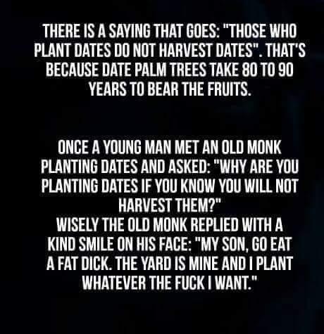 Wise words - meme