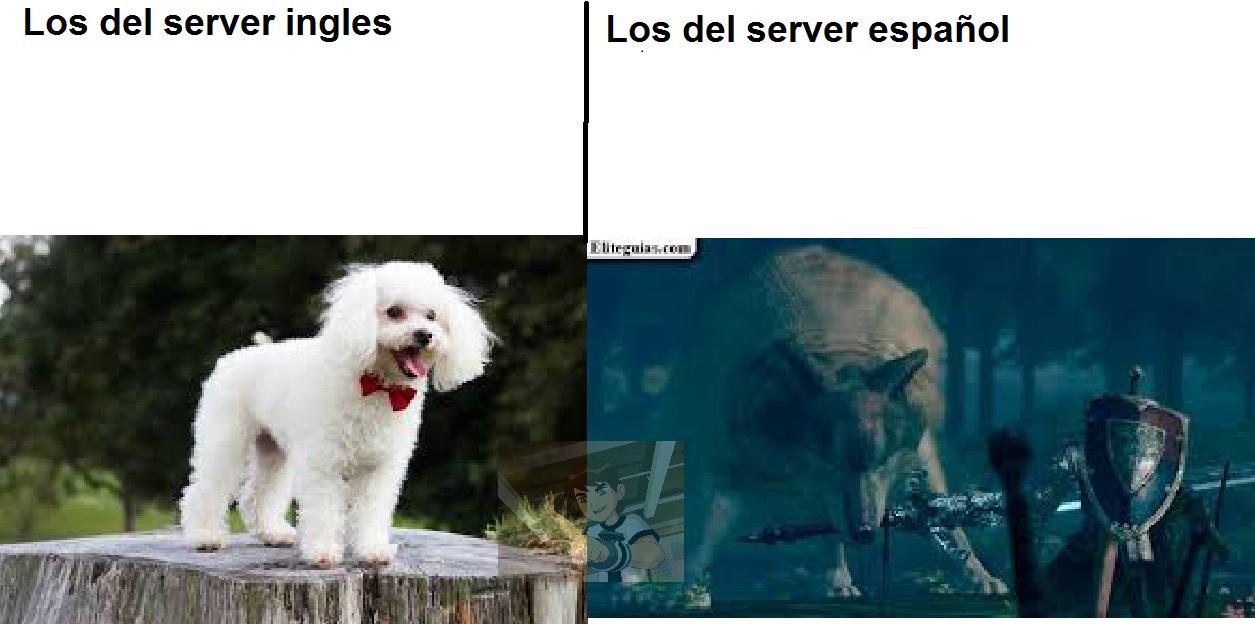 los del server ingles son unos maricas de mierda y virgos de mierda y los del server español son unos capos :fuckyeah: - meme