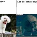 los del server ingles son unos maricas de mierda y virgos de mierda y los del server español son unos capos :fuckyeah: