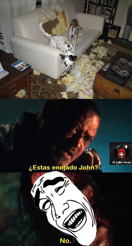 John no se enojaría por el desastre de los perritos jsjsjsj - meme