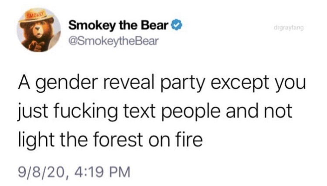 smokey the bear says don't be a fag and have gender reveal party - meme