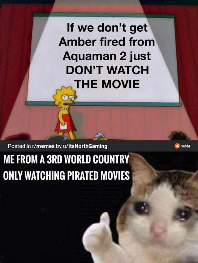 If we don't get Amber fired from Aquaman 2 just don't watch the movie - meme