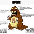 O corpo de um HueBR